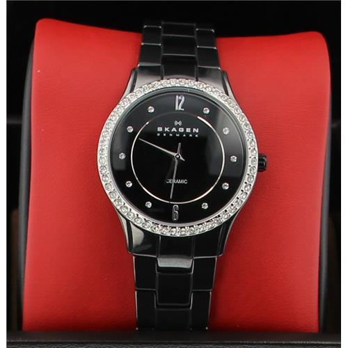 Luxury Brands Skagen SK347SBXBC 768680133646 B0042M0MPA Fine Jewelry & Watches