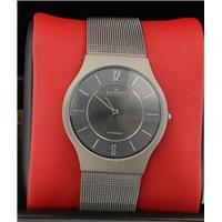 Authentic Skagen 233LTTM 768680038293 B0000C9ZBY Fine Jewelry & Watches
