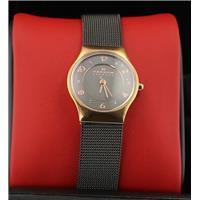 Authentic Skagen SKW2270 768680211986 B00NBPWUM2 Fine Jewelry & Watches