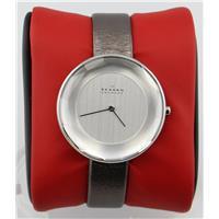 Authentic Skagen SKW2274 768680211931 B00NBPWVEE Fine Jewelry & Watches