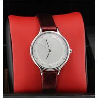 Authentic Skagen SKW2275 768680211993 B00LNHRGYW Fine Jewelry & Watches