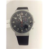 Authentic Skagen SKW6100 768680204513 B00KNQWS6K Fine Jewelry & Watches